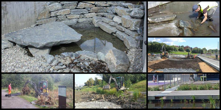 Figure 3: In all reopening projects, the City of Oslo strives to create the aquatic habitat and side areas as natural as possible. From top left; natural bottom substratum with large stones as fish hides, adjustments to make sure fish can migrate, combining gravel and soil to facilitate growth of wetland vegetation. From bottom left; transferring wetland and aquatic plants from a nearby overgrown pond, establishing native/resident/indigenous wetland vegetation, storm water from a nearby school is safely led into the newly reopened stream Hovinbekken.