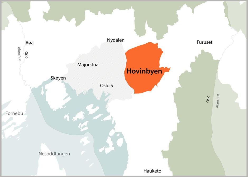 Hovinbyen (4)