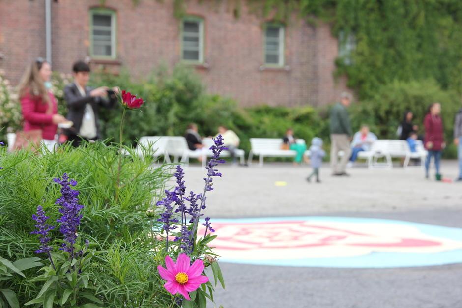 Gårsdrommet i Myntgata med planter og mennesker i bakgrunnen