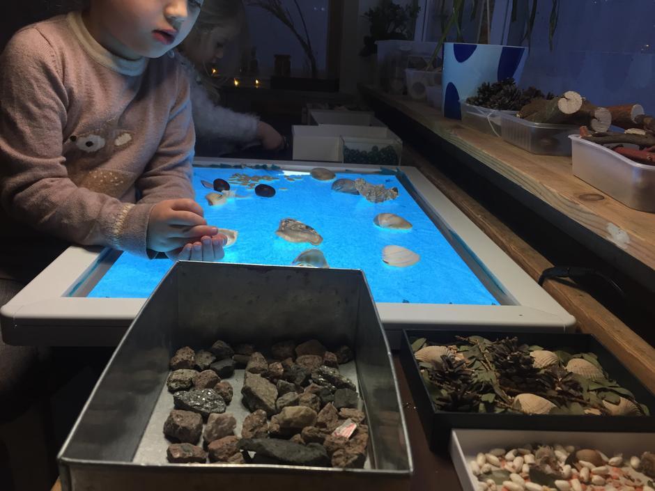 Barn forsker med naturmaterialer på lysbord.