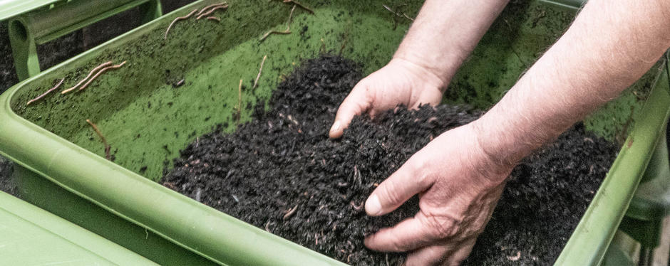Hender tar i meitemark i jord.