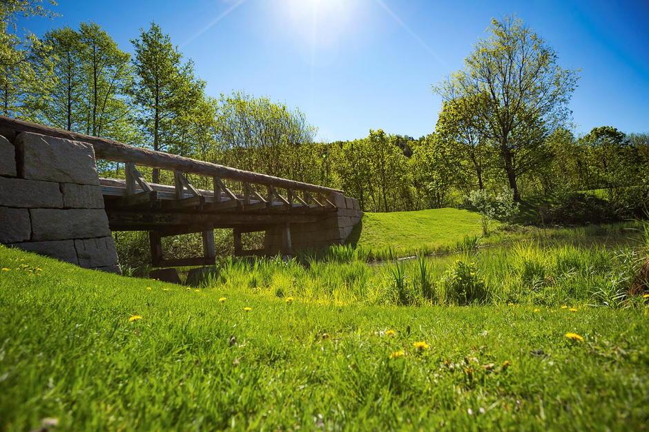Naturfoto med en bekk og en bro som går over.
