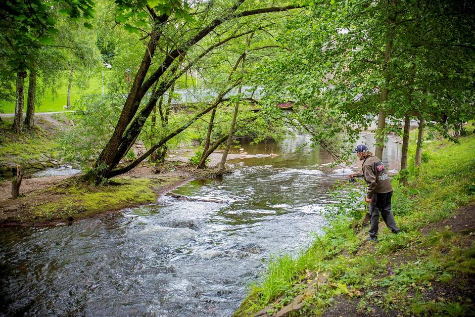 Bildet viser en som fisker i Akerselva. Fisking i Akerselva er en populær aktivitet.