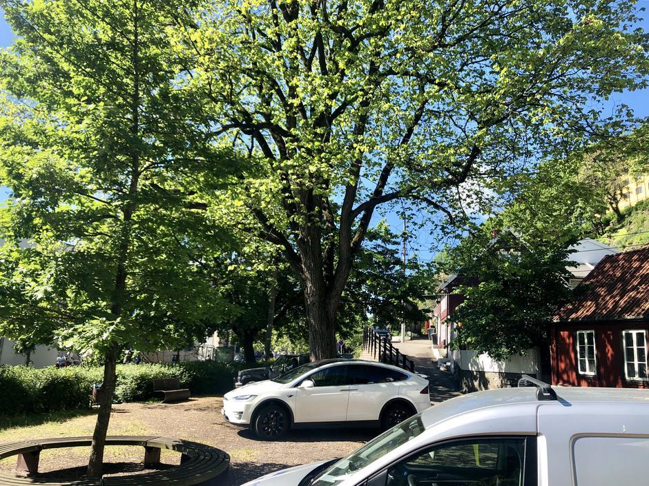 Foto av en  mindre plass med grusdekke, grønne trær, noen feilparkerte biler og de nederste trehusene i Damstredet.