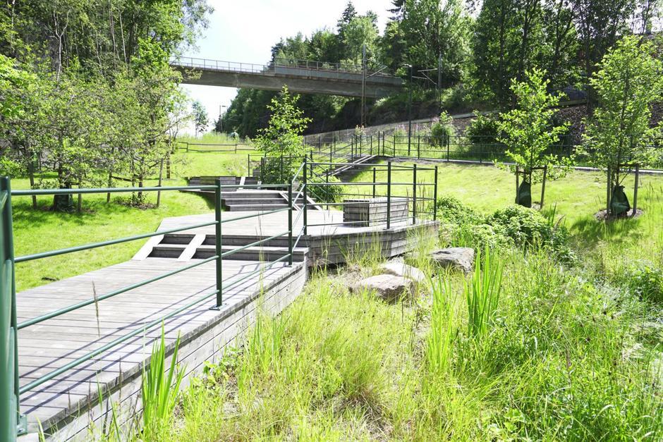 Aktivitetspark i grønne omgivelser