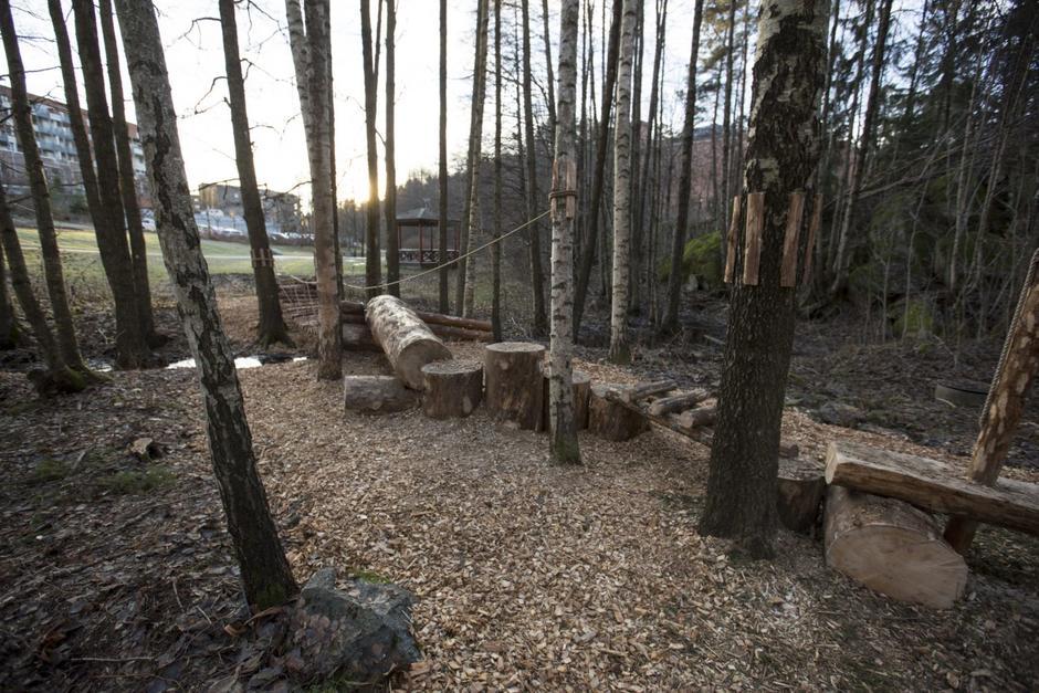 Hinderløype i skogen