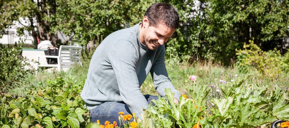 Mann jobber i blomstereng. Foto: Oslo kommune.