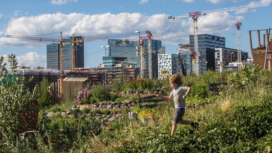 Bilde fra Losæter gård med Barcode i bakgrunnen. Foto: Oslo kommune.