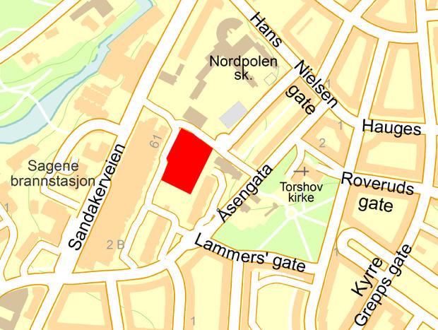 Kartutsnitt over aktuelt område. Plassen som er foreslått navngitt er merket i rødt.
