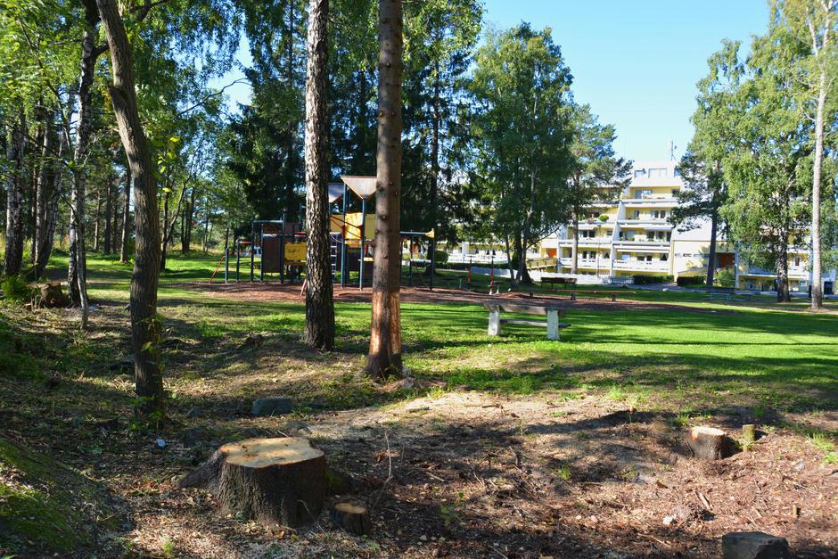 Park med trær og lekestativ. Blokker i bakgrunnen.