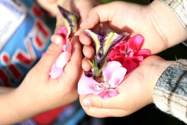 Hender som holder blomster.