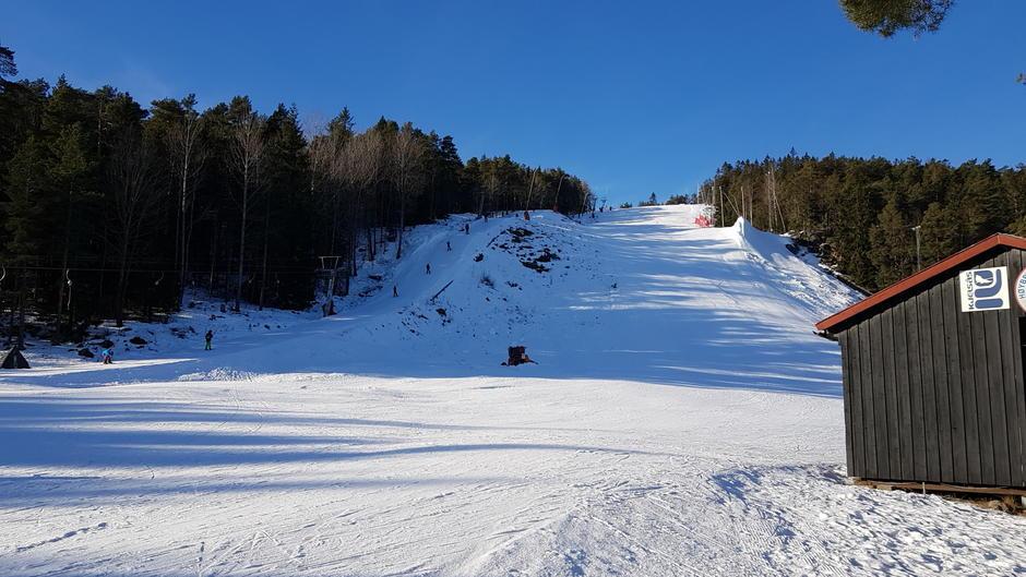 Alpinbakke med heis sett opp mot topppen.