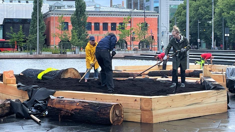 En stor plantekasse fylt med jord plassert på Anne-Cath Vestlys plass. Mennesker i regntøy raker jorda i plantekassen.