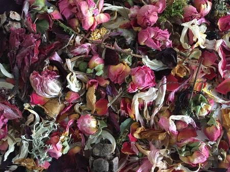 Illustrasjonsfoto tørkede blomster