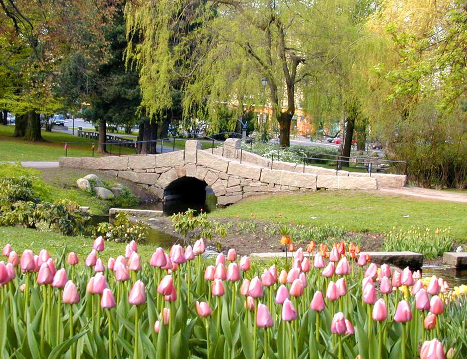 St. Hanshaugen park om våren foto