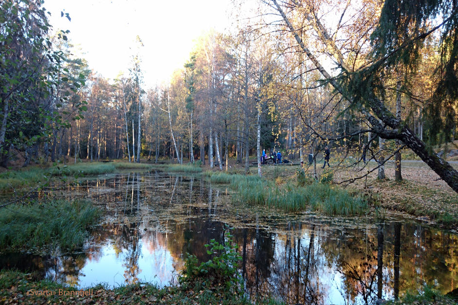 Brannfjell friluftsområde, Ekeberg